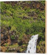 Waimea Falls  Wood Print
