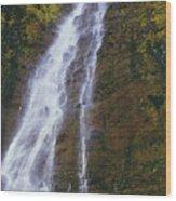 Waimoku Falls Wood Print