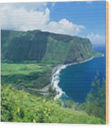 Waipio Valley Lookou Wood Print