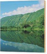 Waipio Valley Stream Wood Print