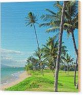 Waipuilani Beach Kihei Maui Hawaii Wood Print