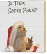 Waiting For Santa Paws Wood Print by Joni McPherson