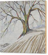 Waiting Out Winter Wood Print