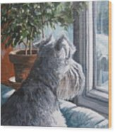 Waiting Patiently Wood Print by Anda Kett