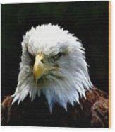 Wake Up America Wood Print