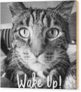 Wake Up It's Your Birthday Cat- Art By Linda Woods Wood Print