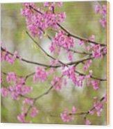 Waking Blooms Wood Print
