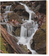 Walden Creek Cascade Wood Print