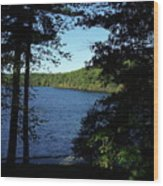 Walden Pond End Of Summer Wood Print by Lawrence Christopher