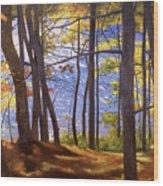 Walden Pond IIi Wood Print