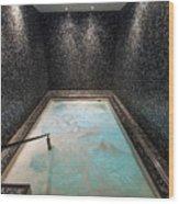 Waldorf Astoria Chicago Spa Wood Print
