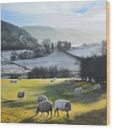 Wales. Wood Print