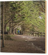Walk Among The Trees Wood Print