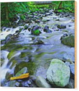 Walk Bridge Over Moffit Creek Wood Print
