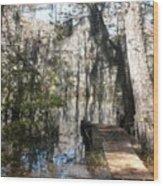 Walk In Nature Wood Print