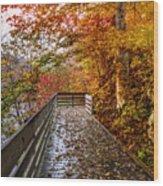 Walk Into Autumn Wood Print