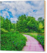 Walk Into Beauty Shaw's Nature Reserve Wet Lands Wood Print