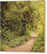 Walk Into The Forest Wood Print