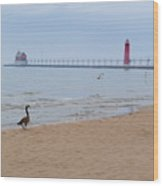 Walk On Lake Michigan Wood Print