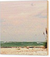 Walk The Beach Wood Print