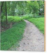 Walk The Path Wood Print
