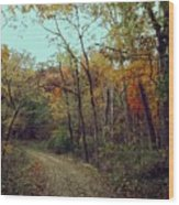 Walk Through Lowell Park Wood Print
