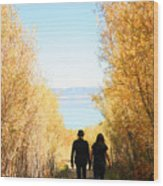 Walk To Mono Lake Wood Print