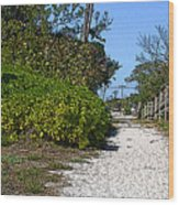Walk To The Beach Wood Print