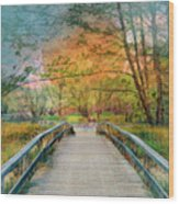 Walk To The Lake In Watercolors Wood Print