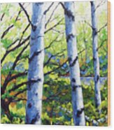Walk To The Lake Wood Print