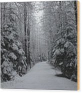 Walk With Frost Wood Print