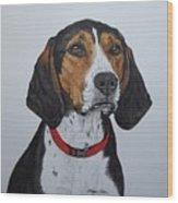 Walker Coonhound - Cooper Wood Print