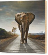 Walking Elephant Wood Print