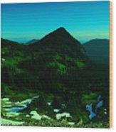 Walking In The Cascades Wood Print