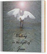 Walking In The Light Of Jesus Wood Print