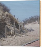 Walking In The Sand Wood Print