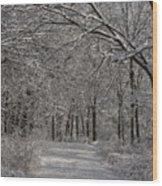 Walking In The Woods Wood Print