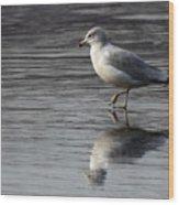 Walking On Water 4850 Wood Print