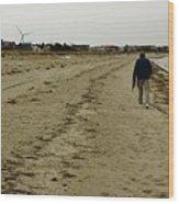 Walking The Beach Wood Print
