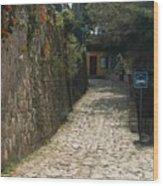 Walking The Streets Of Santa Lucia - 2 Wood Print