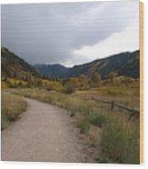 Walking Trail In Colorado Wood Print