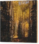 Walking With Aspens Wood Print