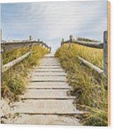 Walkpath To The Beach Wood Print
