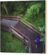 Walkway Tahquamenon Lower Falls Upper Peninsula Michigan Wood Print