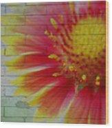 Wall Flower Wood Print