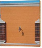 Wall Lamp And Windows In Trujillo In Peru Wood Print
