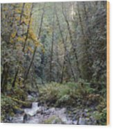 Wallace River Wood Print