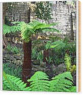 Walled Garden Wood Print