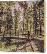 Wallowa Lake Foot Bridge Wood Print