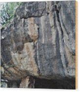 Walnut Canyon National Monument Portrait Wood Print